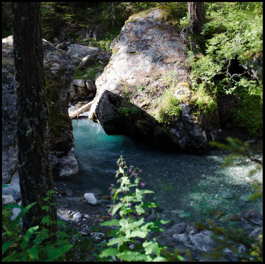torrent à truite de Haute-Savoie
